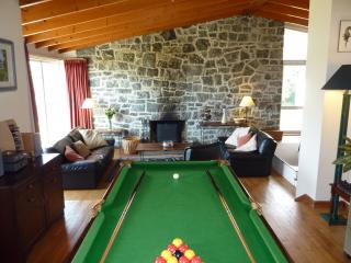 Slate Bed Pool/Snooker Table