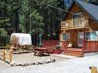Welcome To Bear Foot Lodge, South Lake Tahoe