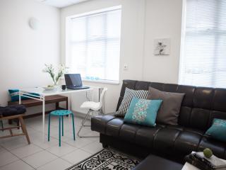 Nice apartment in central Reykjavík, Reikiavik