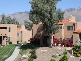 Amazing Mountain Views! Enjoy Resort style living! (MINIMUM 30 DAY STAY), Tucson