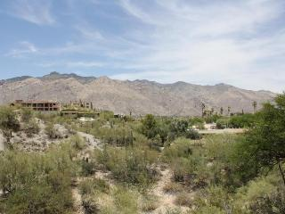 You will not find better mountain views in Tucson! (MINIMUM 30 DAY STAY)
