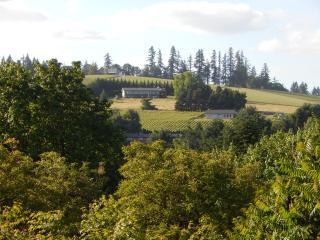 Pinot Vista: Wine Country Retreat