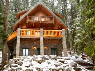 Rustic Log Home with Modern Charm and Hot Tub #47, Glacier
