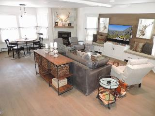 570 West Colorado - Newly Remodeled Historic Main Street Family Home - 5 Bd / 3.5 Ba - Sleeps 10 - Ideal Vacation Home for Families/Multi - Winter or Summer!, Telluride