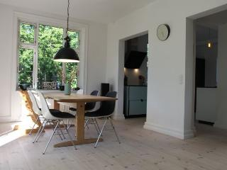 Large Copenhagen villa apartment with wonderful garden