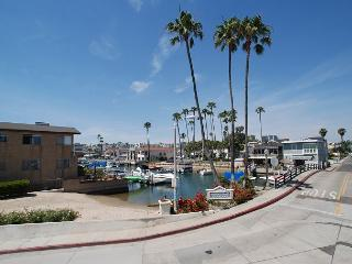 Spacious Getaway - Canal Views, Rooftop Deck, Balcony, and Kayaks (68377), Newport Beach