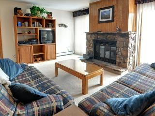 BUFFALO VILLAGE 306: 2 Bed/2 Bath, Comfortable & Affordable, Elevator, Clubhouse, Trails Nearby, Silverthorne