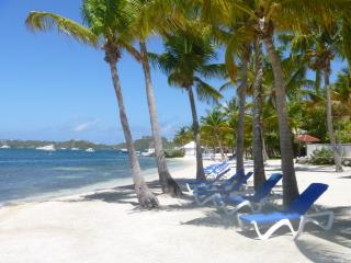 Beach Front Condo (2 to 6 persons) Nettle Bay