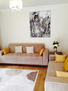 Lounge with 4 seater sofa bed  and 3 seater couch