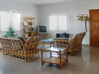 Precioso y amplio chalet justo a la orilla de la playa (Villa Las Palmeras 45)