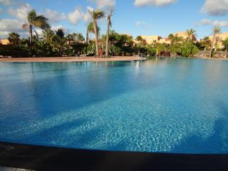 Nice apartments with spectacular saltwater pools, Corralejo