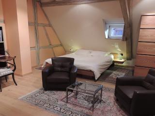 Dolder loft de 52m², classé 5 étoiles, 4 clés, Riquewihr