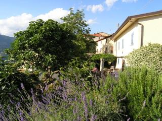 Casa Niki and garden, with lavender, jasmine, rosemary, bay and an ancient olive tree
