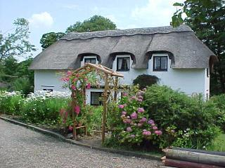 Thatched cottage with 4.5 acre wood on River Doon, Ayr