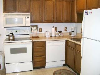 Three Seasons - 1BR Condo Silver #136-A - LLH 60117, Crested Butte