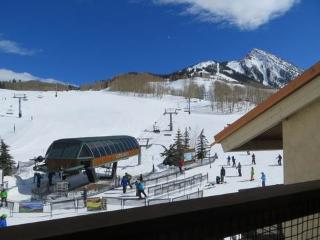 Ski In / Ski Out Condominium, Premium Features and Amenities (201220)