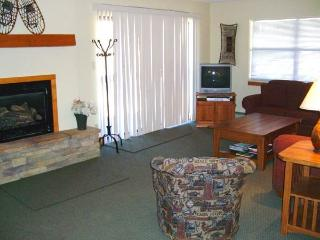 Evergreen - 3BR Condo Gold #7 - LLH 60065, Crested Butte