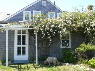 Walk to Beach; 4 bedroom, 4 ba, Cape Cod Farmhouse