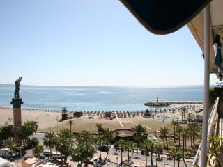 Marina Banus - Frontline Beach Penthouse Apartment