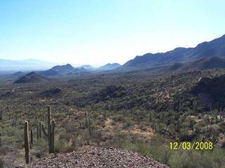 Dream with Sahuaros Casita, Tucson