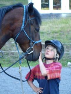 Our horses - the teachers!