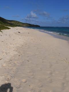 Beach at Issac Bay on one of the busiest days of the year