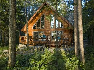 Log Home On Lake Chippewa 3 bed 2 bath Eaglesnest