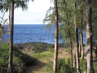 Lovely Ocean View Home - Best Value in Puna, Hilo