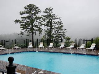 Available! Great Views, Clean! 2 bd/2 bath Sleeps 9 Resort Cabin