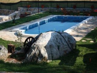 Villa Moderna Dalmacia, Vrsine