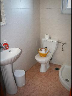 Shower and toilet upstairs