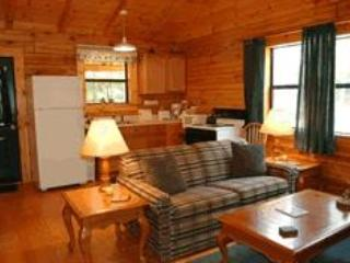 Lakeview Log Cabin Interior