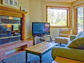 The living room with 42' HDTV (Netflix / Hulu / Movie collection), fireplace and Sofa-bed.