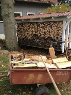 firewood put away for the winter