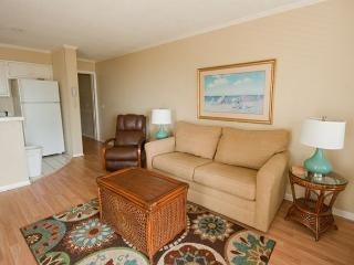Ocean Dunes Villa 316 - 2 Bedroom 2 Bathroom Oceanfront Flat Hilton Head, SC