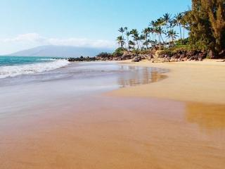 Maui Vista 1-307 Renovated 1B/1B Sleeps 4 FANTASTIC Ocean View!, Kihei