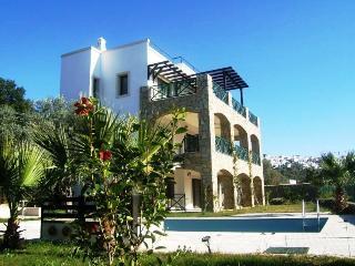 Villa Silver 602, Bitez