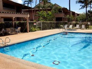 Kihei Bay Vista A #103 Ocean View 1 Bd 1 Bath Sleeps 2