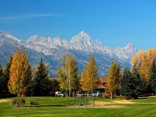 AVAILABLE FOR NEW YEARS! Beautiful Location in Jackson Hole at Teton Shadows!