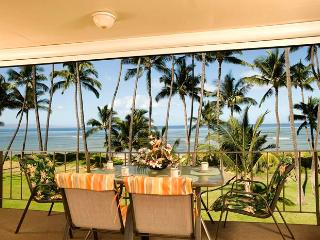 Hale Kai O'Kihei 2 Bedroom 316