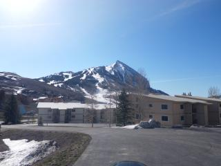 Beautiful Condo in Mt. Crested Butte!