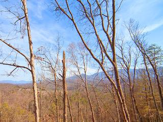 Panorama, Gatlinburg