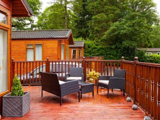 Decking area with BBQ