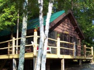 Authentic Adirondack Cabin-peace, quiet, nostalgia, Saranac Lake