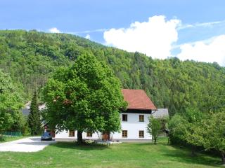 Country House Trata - De Luxe Apartment, Kranjska Gora