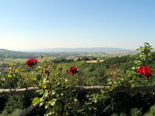 Castel Darno - Il Subasio app.to max 12 pers