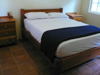 The Crimson Orchid Inn, #3 Handicap accessible Queen size room, Copper Bank