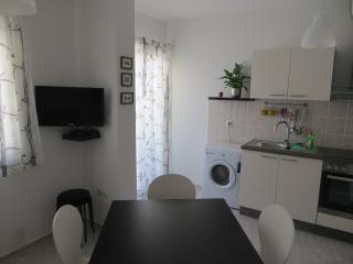 Spacious apartment in the old town of Novigrad (30 km from Zadar)