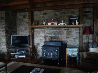 Den with woodstove insert