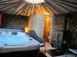 Pet-Friendly Vacation Rental with a Hot Tub and Patio, Saint-Maximin-la-Sainte-Baume